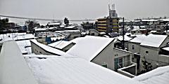 Snow20080203