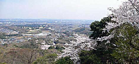 Iiyama_kannon02