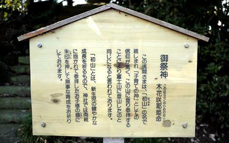 Kawasima_fuji06