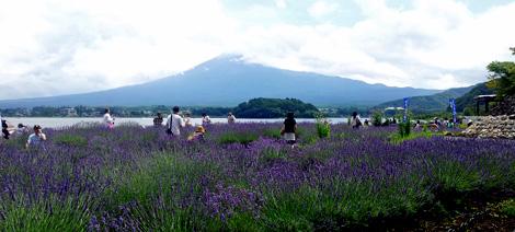 Mt_fuji0715_3