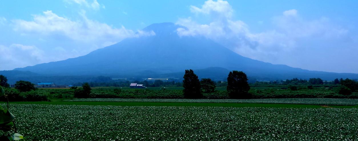 Hokkaido0715_09