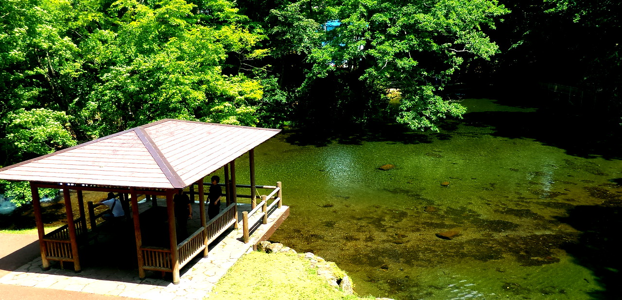 Hokkaido0715_10