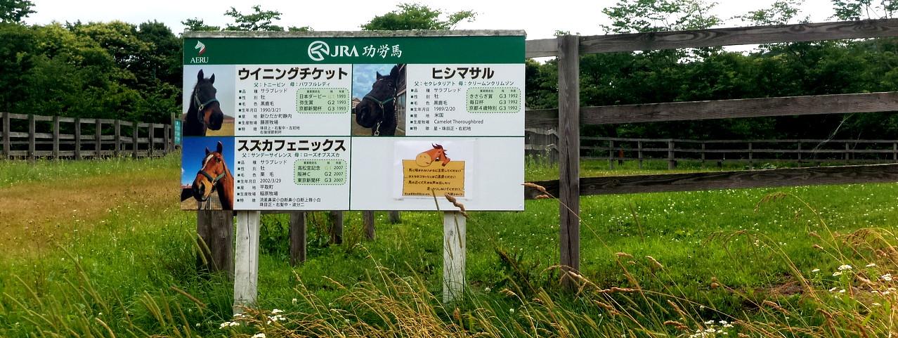 Hokkaido0719_05